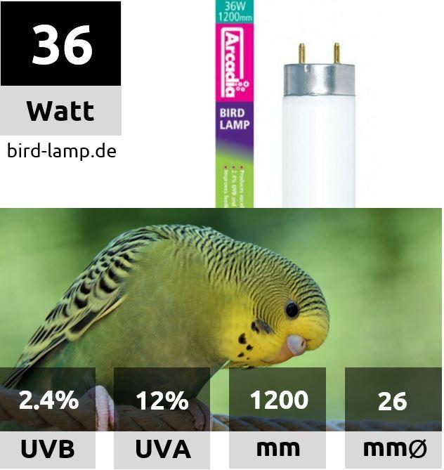 Ardacia Bird Lamp – T8 UV-Leuchtstoffröhre 36W